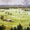 Hawkesbury Plains farmland after the rain from Freemans Reach
