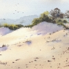 sand-dunes-fingal-bay_0